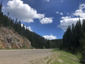 Drive north on Rt 89 in Montana