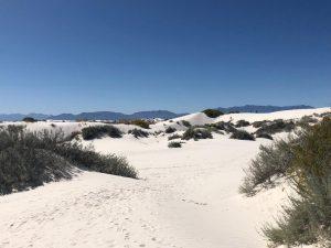 White Sands Nature Trail